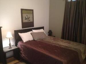 Amazing 1 bd FULLY FURNISHED with private yard Regina Regina Area image 3