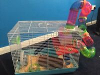 Large hamster cage with three Baby dwarf hamsters for sale!!!