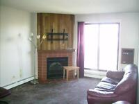Spacious 3 Bedroom Condo in Lakeview! GREAT Price!!