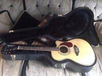 Electro-acoustic guitar Japanese Tokai Custom Hummingbird