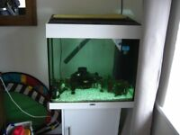 juwel lido 120 tank and stand