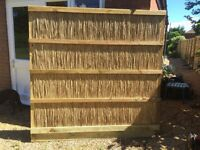Reed fencing panel 6 fr x 6 ft