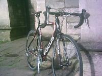 GENUINE BARGAIN - new in January ( rode 4 miles ) FOCUS CULEBRO road bike bicycle