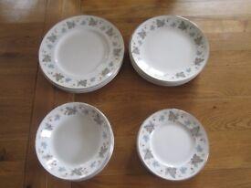 Vinewood ridgway white mist plates 23 pcs