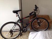 Activ by Raleigh Flyte II Men's Rigid Mountain Bike (Black, 19 Inch) - incl. Equipment