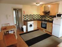 Minister Street, Cathays, 1 Bed Flat, £600 pcm, Available 01/07/2017