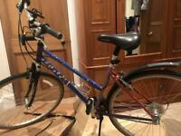 Hand-painted HYBRID bike