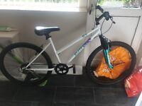Women's used Summit bike for sale