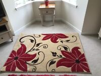 Brand new gorgeous Wayfair rug - never been used