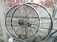 Mavic ksyrium elite 700c road bike wheel - good condtion
