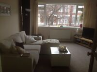 Large double room in 2 bed flat share
