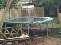 Large oval trampoline FREE
