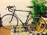 Vintage Peugeot Pantera Racing Bike (Large)