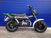 2013 SKYTEAM T REX 125cc REGISTERED AS A 50cc , SUZUKI RV REPLICA SAND BIKE