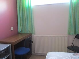 Nice and cosy Single Room for Working Person
