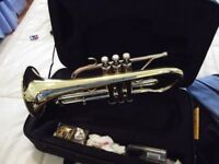 BACH PRELUDE CORNET 3 MONTHS OLD BRASS LAQUERED