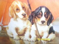'Sheltering puppies' print under glass, lovely engraved frame, very cute! £9