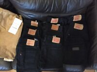 Levi's jeans Lacoste and Paul and shark polo shirts