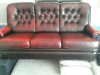 Burgundy Chesterfield 3 seater sofa