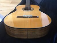 Tanglewood TCO Tiger Wood Classical Guitar with Gig Skinz Case