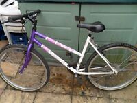 "SCOTT TIMBER LADIES ADULTS MOUNTAIN BIKE WITH 26"" WHEELS"