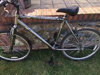 Everlast All Terrain Mountain Bike. 52 cm frame