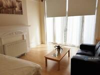 Studio flat in Alexandra Park Road, London, N10