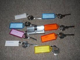 Locksmith Tool Bump Rack Rake Try Out Lock Pick Keys set Skeleton