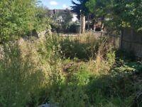 Garden Clearance. Garden waste removal (fair price)