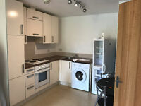 ONE BED AVAILABLE IN ELVERSON ROAD ... ACCEPTING DSS... NEW BUILDING