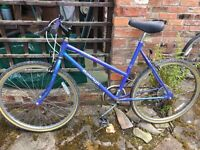 2 RaleighTeenage Girls Bikes. Flat tyres but otherwise hardly used .