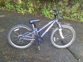 TWO girls Mountain bikes for sale ( will sell separately )