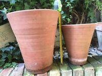 Various Terracotta garden pots
