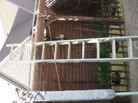 double 10 rung alluminium ladder