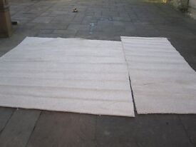 Carpet Beige Brand New