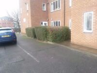 Office's to Let 3000 sqft /Free Parking/ RENT NOW REDUCED