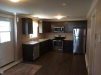 Brand New Ocean View Two Bedrooom Badement Apartment