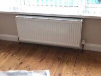 Puro central heating radiator. 110 cm x 45 cm.