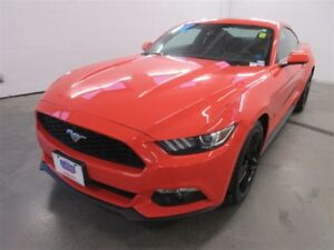 2015 Ford Mustang EcoBoost! B-UP CAM! ALLOYS! BLUETOOTH! ONLY 15