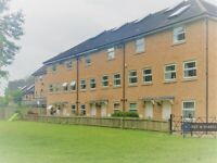 4 bedroom house in Slough, Slough, SL1 (4 bed) (#1154953)