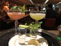 Cocktail Bartender for Events