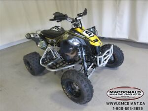 2014 Can-Am DS 450 -