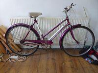Vintage ladies cycle Vindec Atlantic town bike with a Sturmey Archer 3 speed