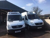 MERCEDES SPRINTER MWB FRIDGE VAN.2011.ONE OWNER.CHOICE OF 2 VANS