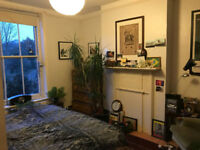 FRIENDLY HOME NEEDS NEW FLATMATE IN NORTH LONDON