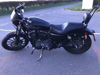 2009 Custom Harley Davidson Sportster