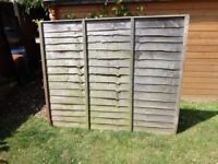 6 Lap Fence Panels 5ft Tall 6ft wide. £5 each collection only