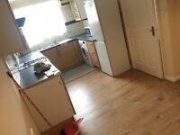 Beautiful 3 Bedroom house with 2 toilets in chingford Dss welcome