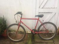 Apollo red bike