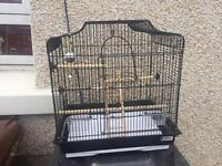 Brand new budgie cage